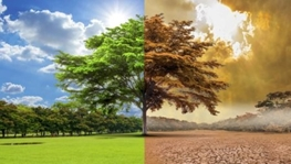 Cleaners developed to minimize global warming effect